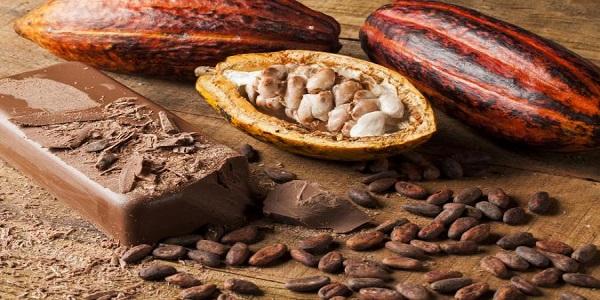 فروش عمده پودر کاکائو خوب