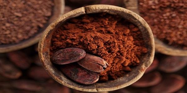 فروش پودر کاکائو