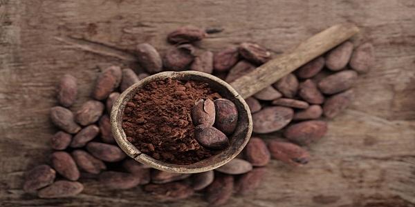 فروش تناژ دانه کاکائو