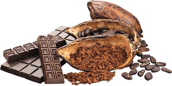 بهترین خرید پودر کاکائو