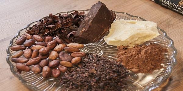 تامین پودر کاکائو برای تولید