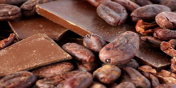 فروش پودر کاکائو شکلات تلخ
