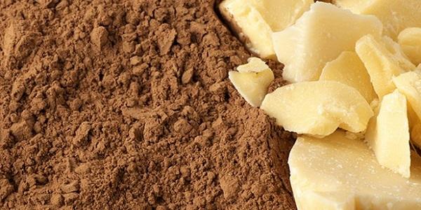 پودر کاکائو فروشی