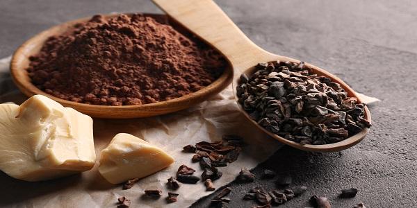 بهترین پودر کاکائو دنیا