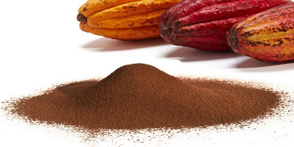 تولید کره کاکائو و پودر کاکائو