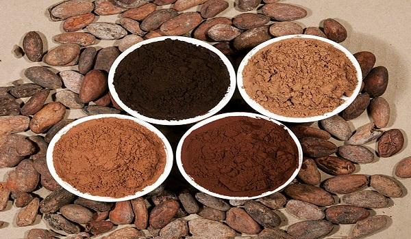 واردات پودر کاکائو سفارشی