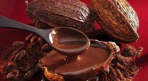 فروش عمده پودر کاکائو تلخ