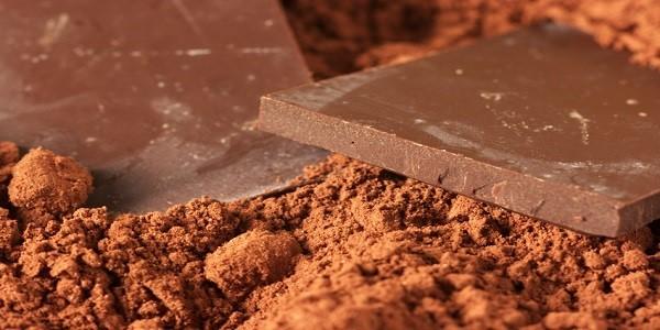 واردات پودر کاکائو هلند