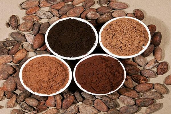واردات و فروش مستقیم پودر کاکائو