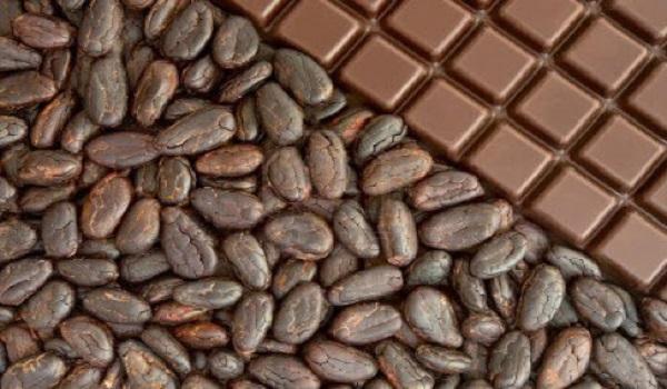 خرید کاکائو تخته