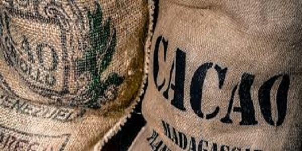 مرکز واردات پودر کاکائو