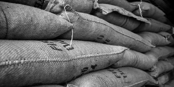 پودر کاکائو طبیعی