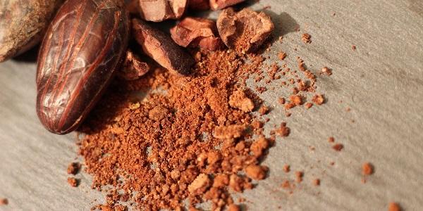 پودر کاکائو کافی شاپی عمده